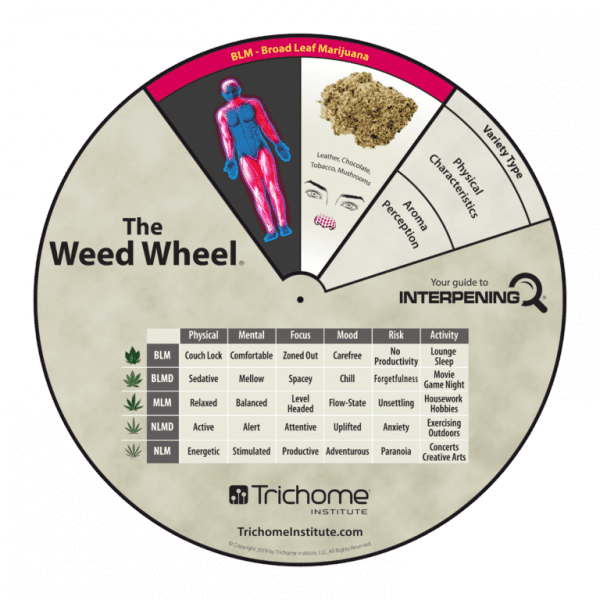 Trichome Institute Weed Wheel Interpening Reference tool