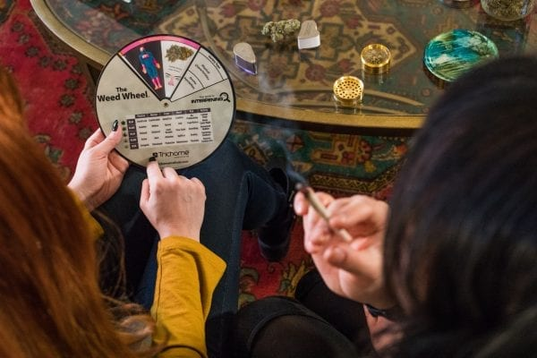 Predicting cannabis psychotropic effects and tolerance with the help of the Weed Wheel