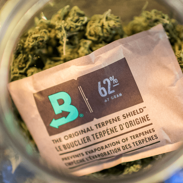 Boveda humidity packs keep your marijuana flower fresh